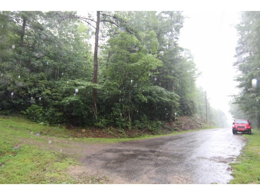 Photo for 000 Forest Wood Lane, Mountain City, TN 37683 (MLS # 9913886)
