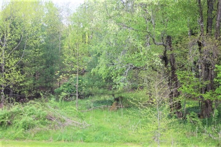 Photo of 996 Liberty Church Road, Mountain City, TN 37683 (MLS # 9922888)