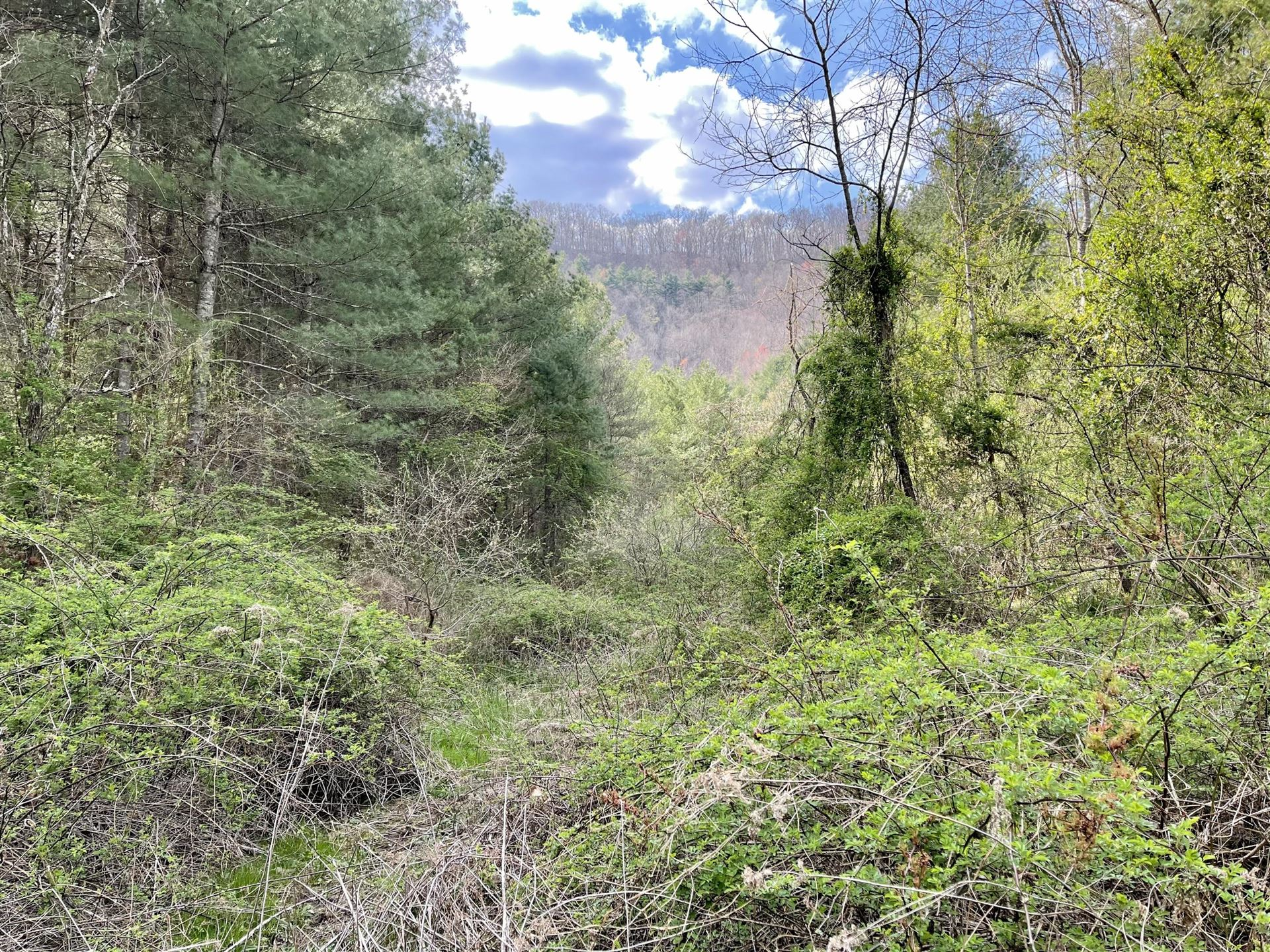 Photo of Tbd Orby Cantrell Highway, Wise, VA 24293 (MLS # 9920902)