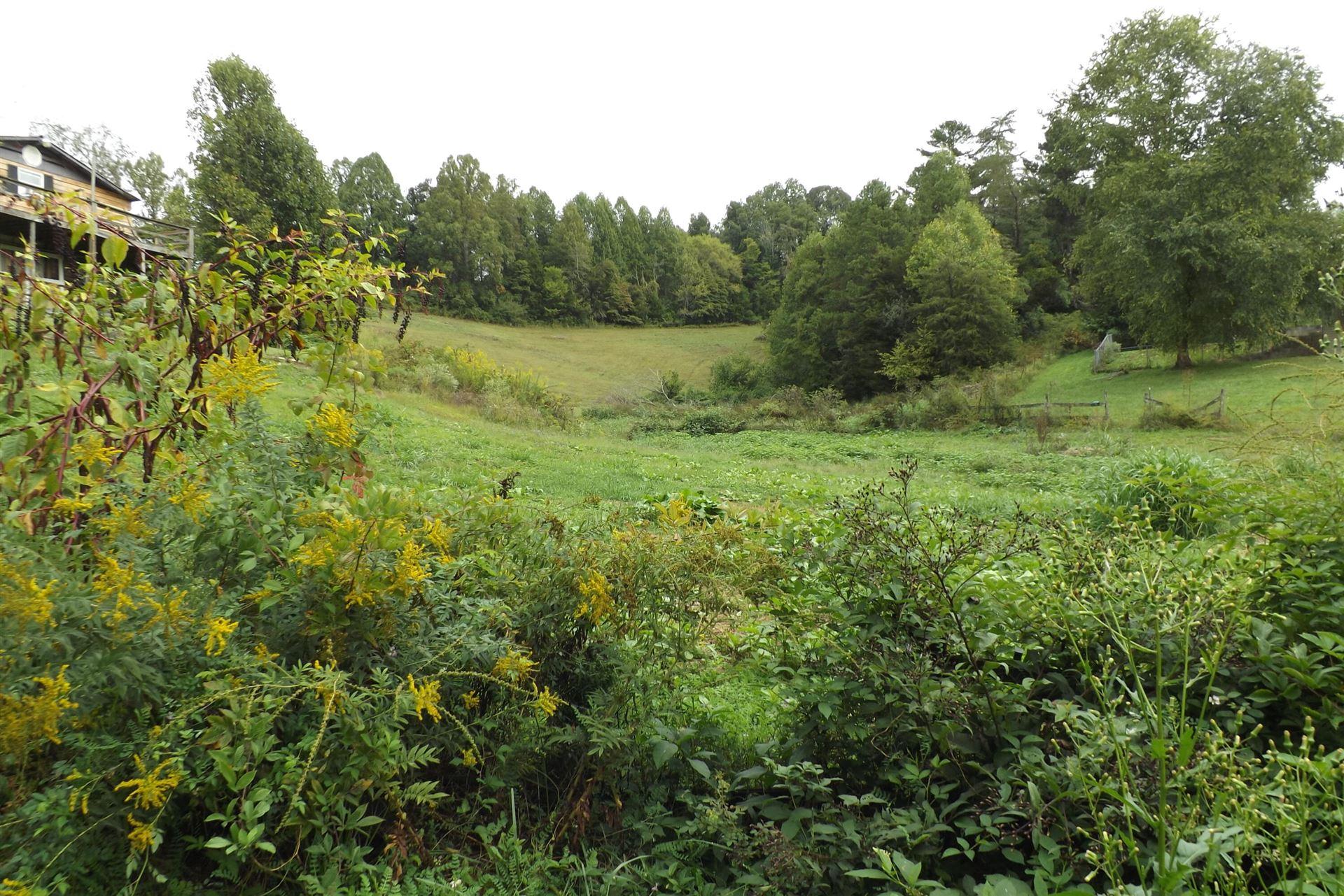 Photo of 0 Upper Possum Creek, Gate City, VA 24251 (MLS # 9928926)