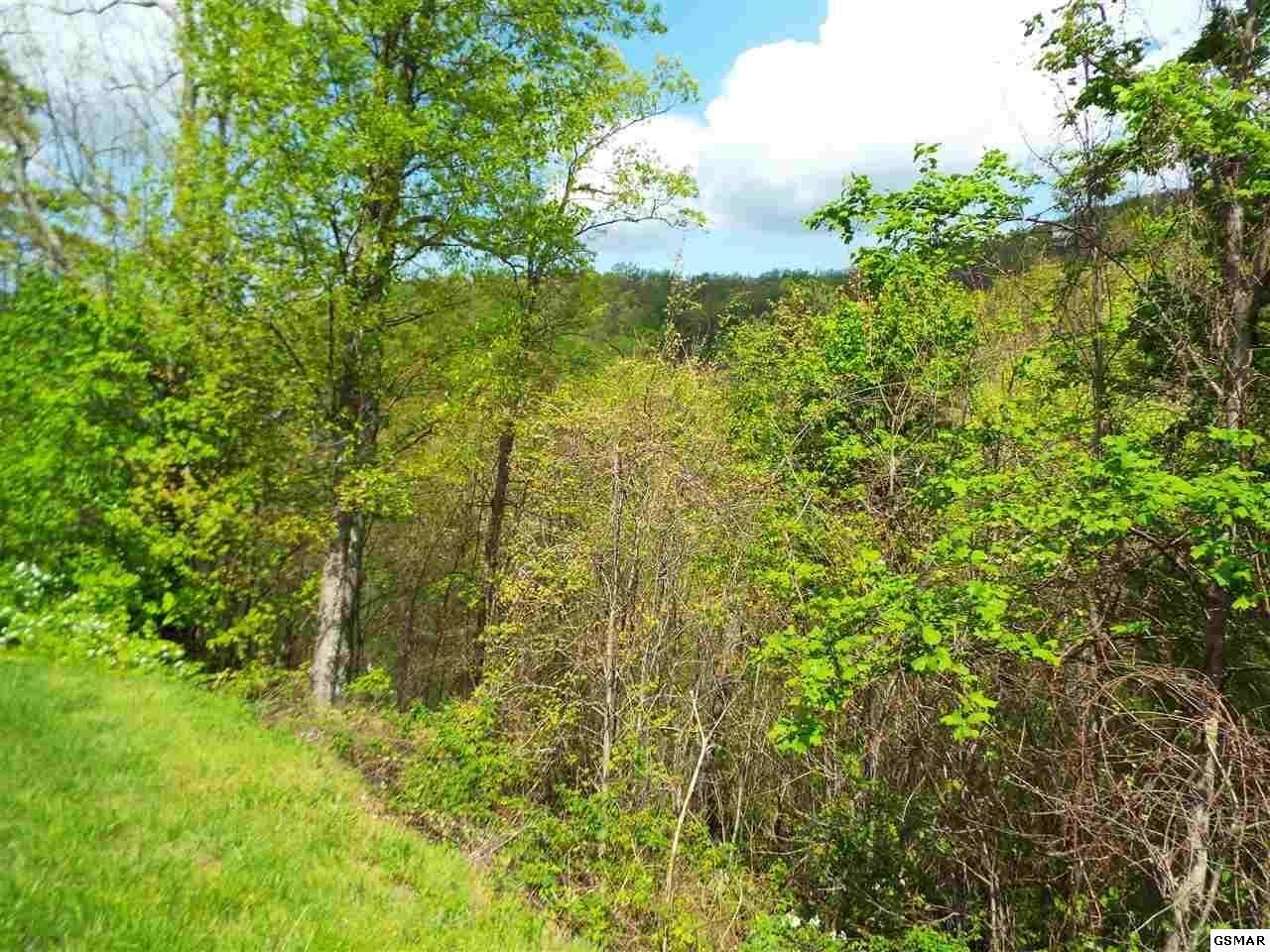 Photo of Lot 63 East Redtail Road, Sevierville, TN 37862 (MLS # 9927929)