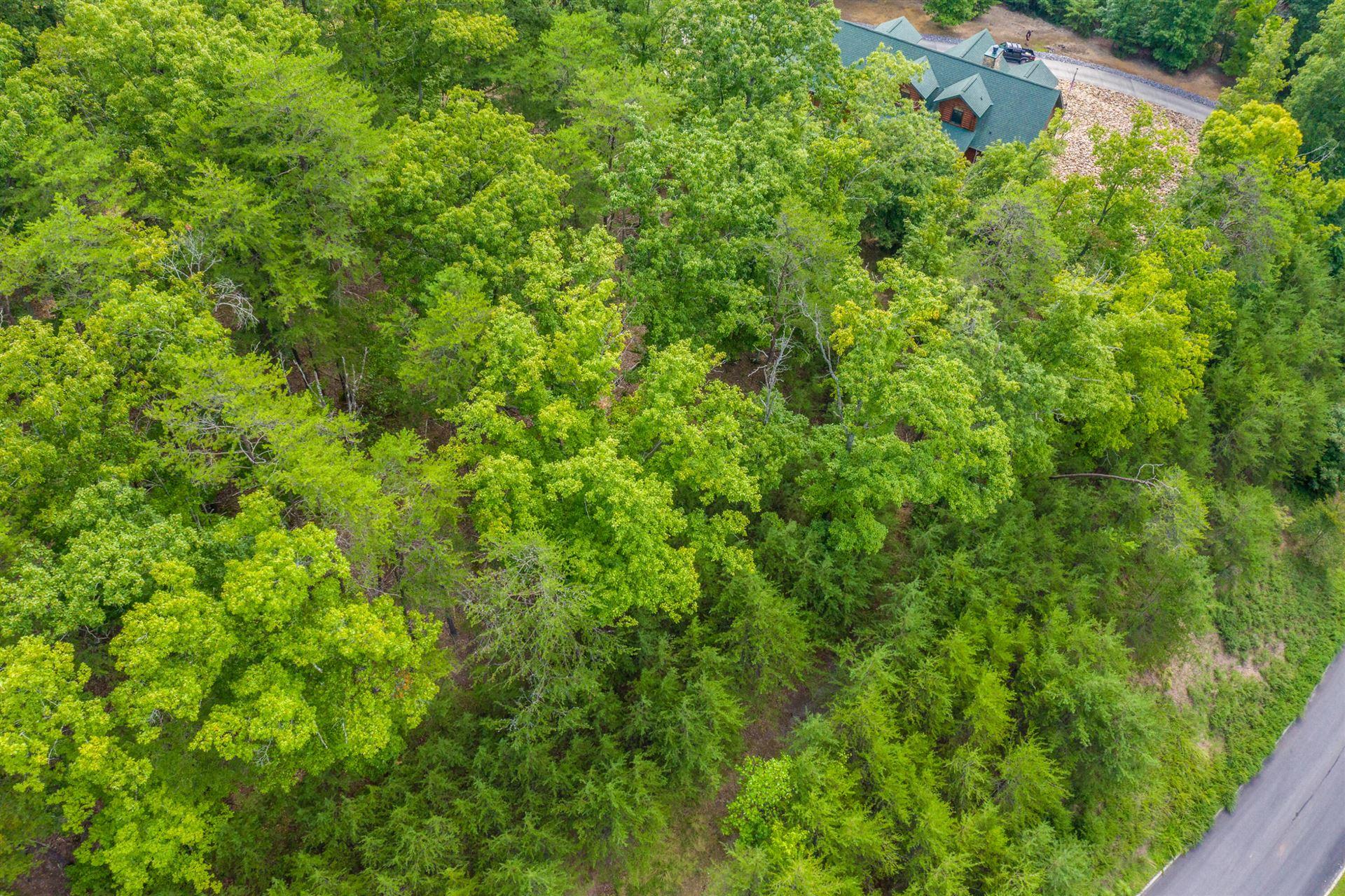 Photo of 9048 Paradise View Drive, Mooresburg, TN 37811 (MLS # 9927930)