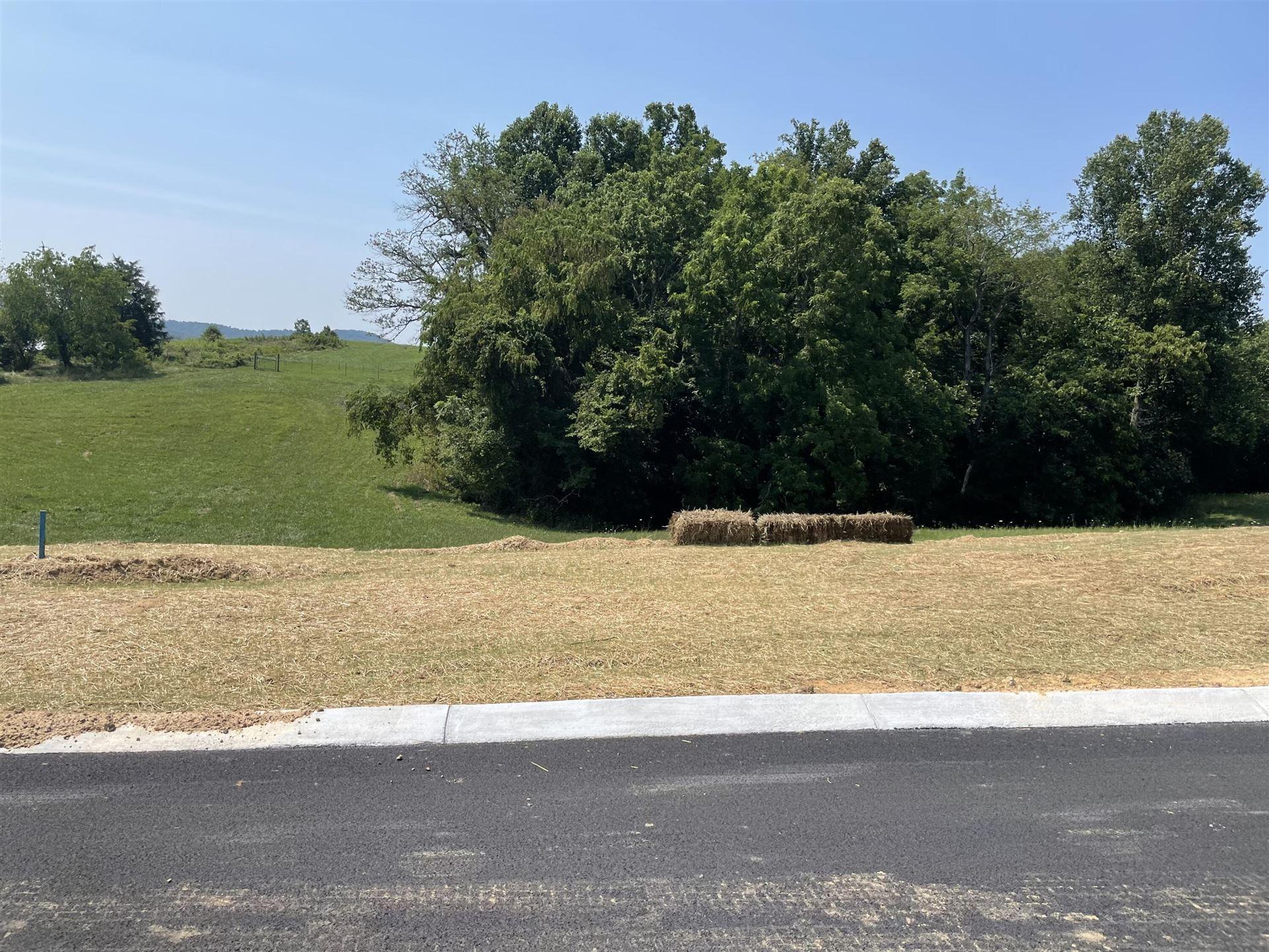 Photo of Lot 11 Charolais Hills, Jonesborough, TN 37659 (MLS # 9919951)