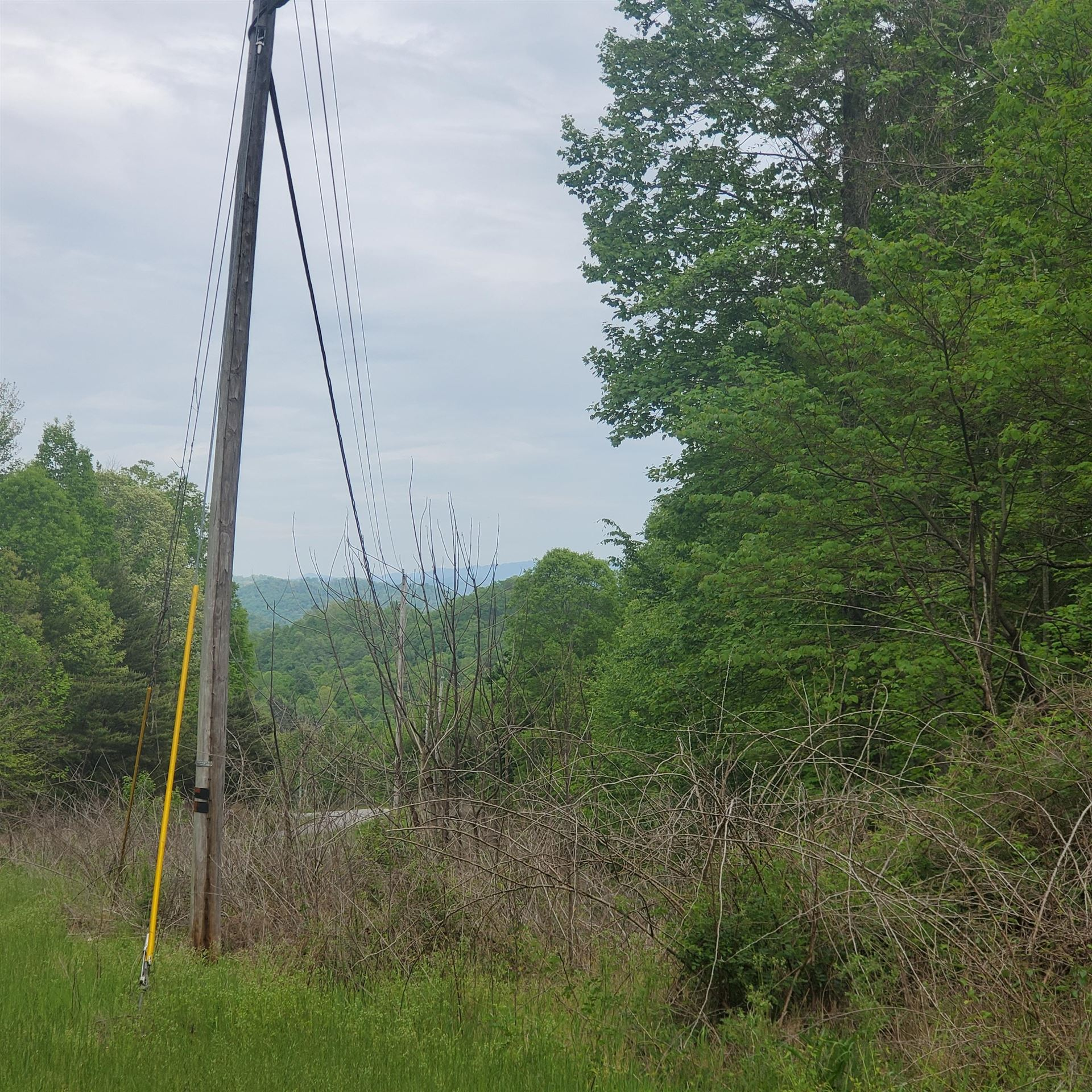 Photo of Lot 130 Whistle Valley Road, New Tazewell, TN 37825 (MLS # 9921951)