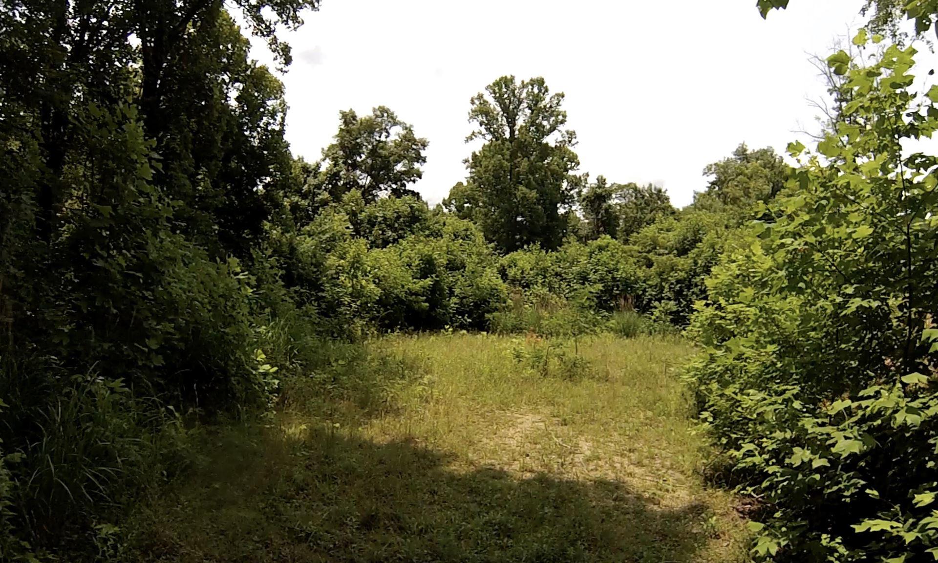Photo of 1213 Mays Ridge Road #Lot 17, Bulter, TN 37640 (MLS # 9925955)
