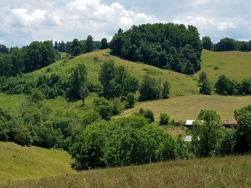 Photo of Tbd Yellow Branch/Seal Town Road, Sneedville, TN 37869 (MLS # 9924965)
