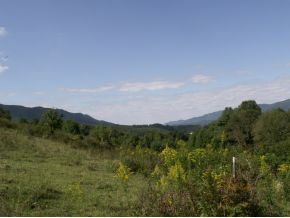 Photo of Tbd Hwy 67 Se Of, Mountain City, TN 37683 (MLS # 324966)