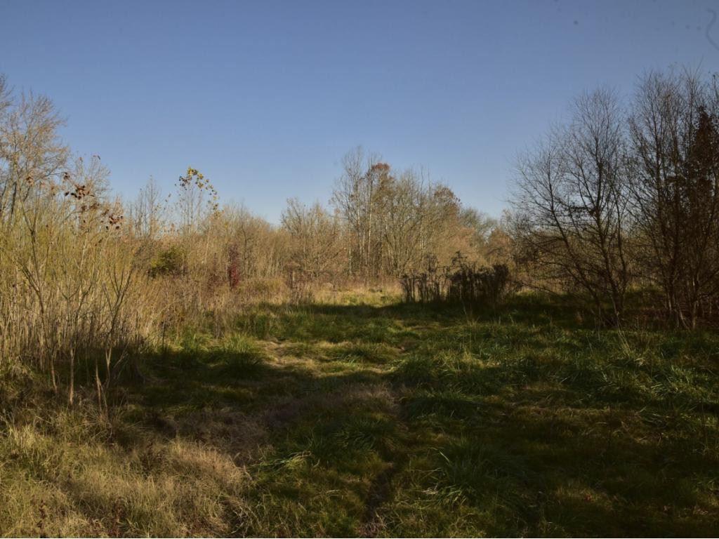 Photo of 1309 East STONE Drive #1309, Kingsport, TN 37660 (MLS # 384969)