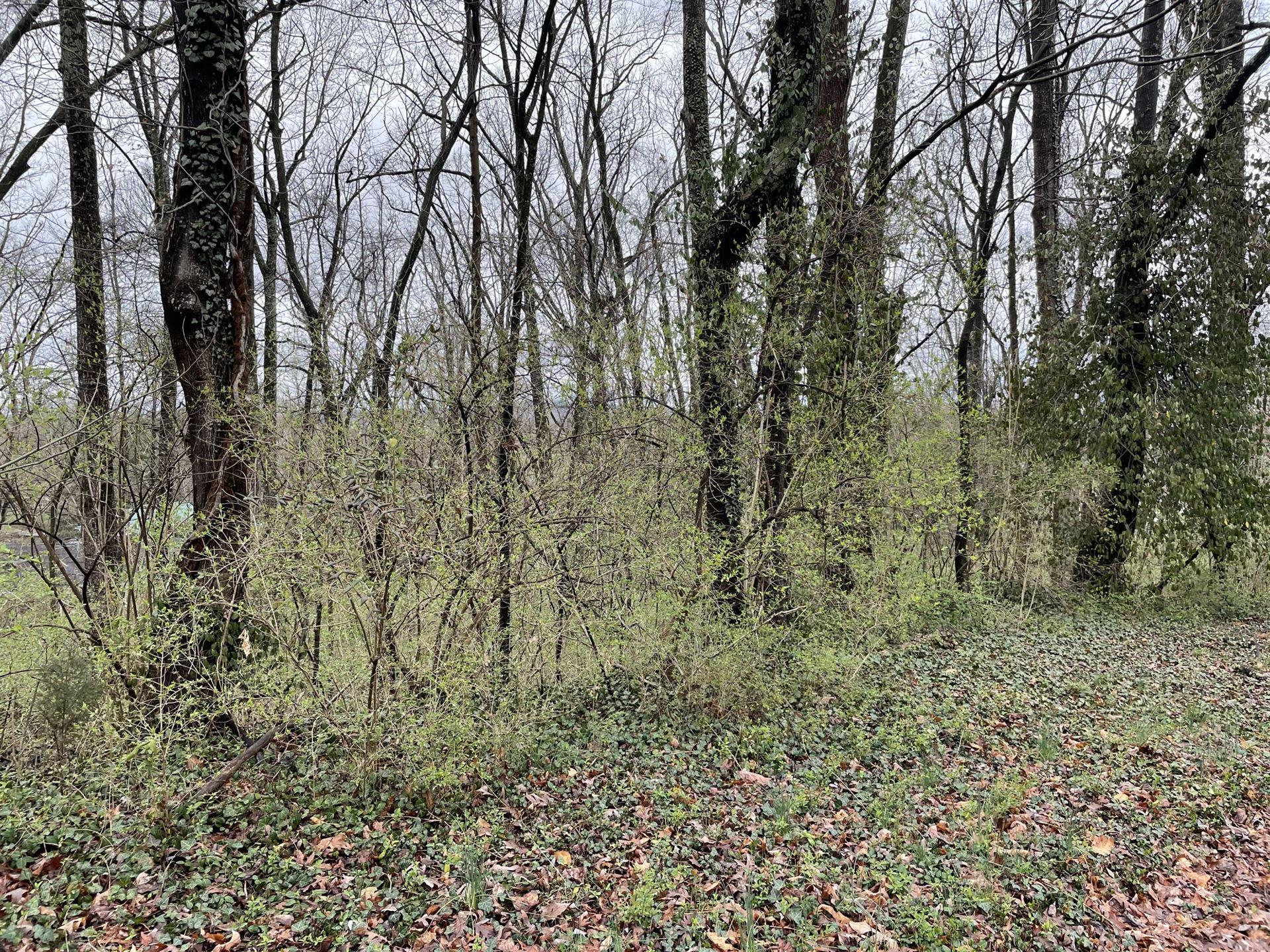 Photo of Lot 20 Hillside Road, Johnson City, TN 37601 (MLS # 9919980)