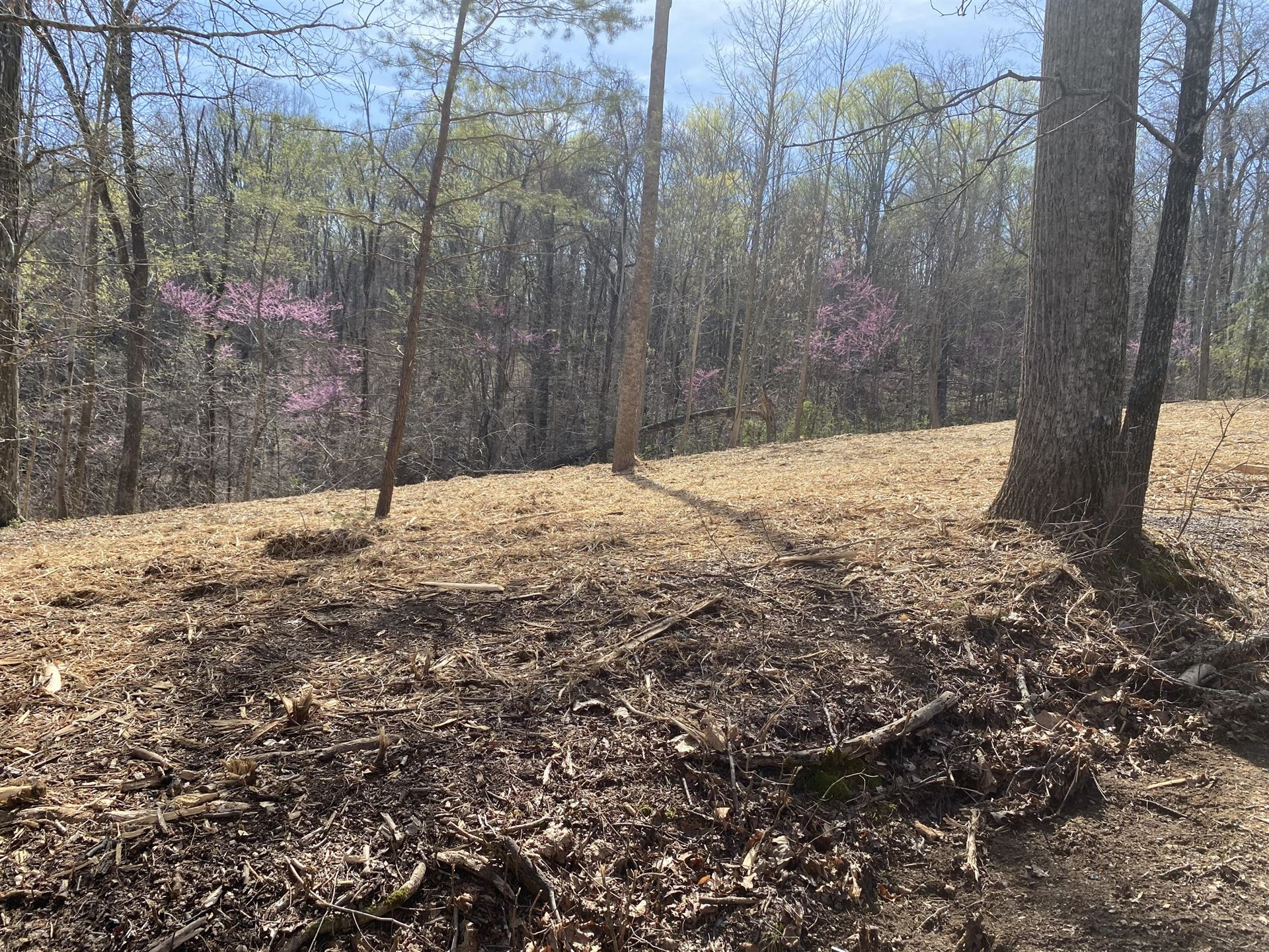 Photo of Lots 6 & 7 Hilltop View Ln, Bean Station, TN 37708 (MLS # 9920983)