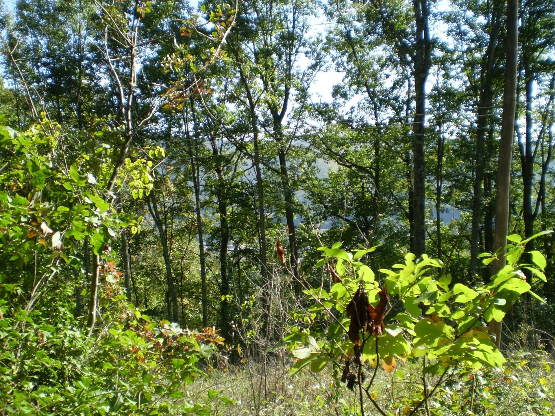 Photo of Tbd Whitaker Farm Road, Norton, VA 24273 (MLS # 9920986)