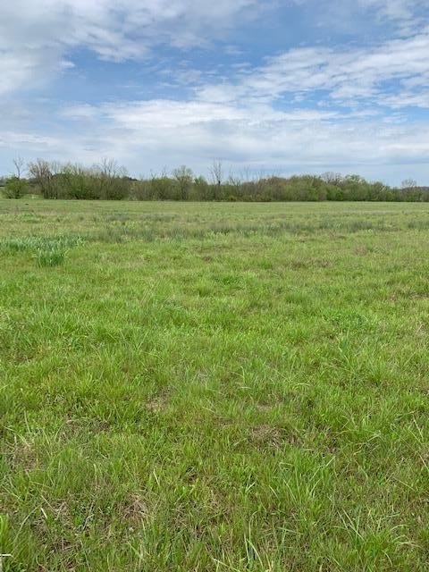 Photo of 0 Pottertown Road, Midway, TN 37809 (MLS # 9921987)