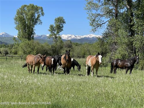 Photo of 3900 S TRAIL DRIVE, Jackson, WY 83001 (MLS # 21-940)