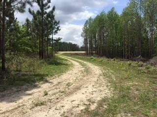 Photo of 1179 E Vanceville County Line Rd., Tifton, GA 31794 (MLS # 128546)