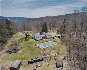 Photo of 250 FORGEDALE RD, BARTO, PA 19504 (MLS # 7189911)