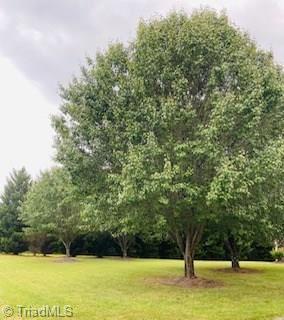 Photo of 627 Turner Road, Lexington, NC 27292 (MLS # 989192)
