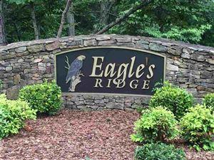 Photo of 3493 Gum Springs Church Road, Pittsboro, NC 27312 (MLS # 2255754)