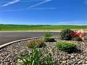 Photo of 1127 Line Court #Lot 8, Colton, WA 99113 (MLS # 238304)