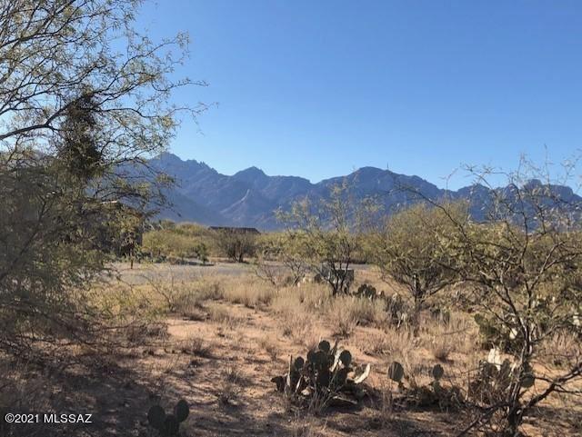 15051 N Gangarebo Place, Tucson, AZ 85739 - #: 22105070