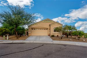 Photo of 14397 N Bannerstone Court, Marana, AZ 85658 (MLS # 21921123)