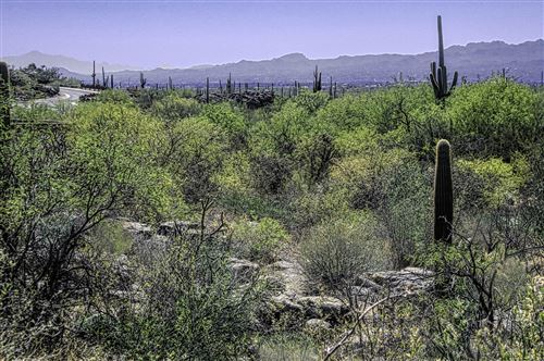 Photo of 13768 N Cactus Valley Court #238, Marana, AZ 85658 (MLS # 22015138)