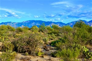 Photo of 899 Tortolita Mountain Circle, Oro Valley, AZ 85755 (MLS # 21830382)