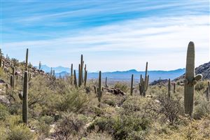 Photo of 4405 W Random Rock Place #201, Marana, AZ 85658 (MLS # 21904674)