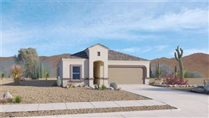 Photo of 9137 W Blue Roan Lane, Marana, AZ 85653 (MLS # 21917735)