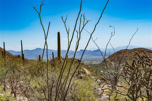Photo of 4375 W Cush Canyon Loop #83, Marana, AZ 85658 (MLS # 22122832)