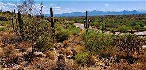 Photo of 4176 W Horizon Ridge Drive #241, Marana, AZ 85658 (MLS # 21924904)