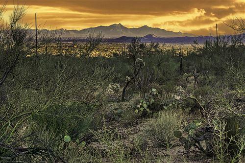 Photo of 4427 W Cayton House Court #214, Marana, AZ 85658 (MLS # 22028957)