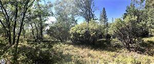 Photo of APN 036-010-19 Mt. Elizabeth, Twain Harte, CA 95383 (MLS # 20181908)