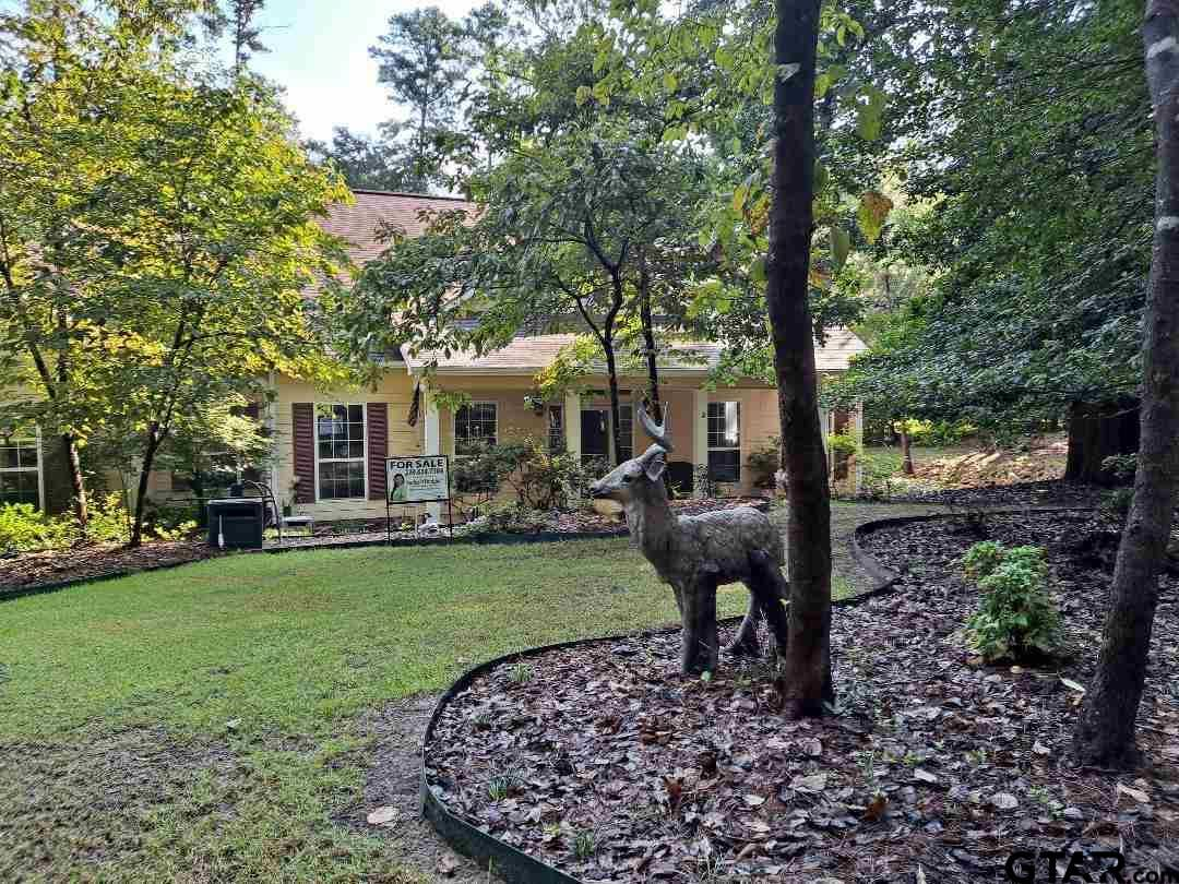 116 Oriole Cove, Holly Lake Ranch, TX 75765 - #: 10138113