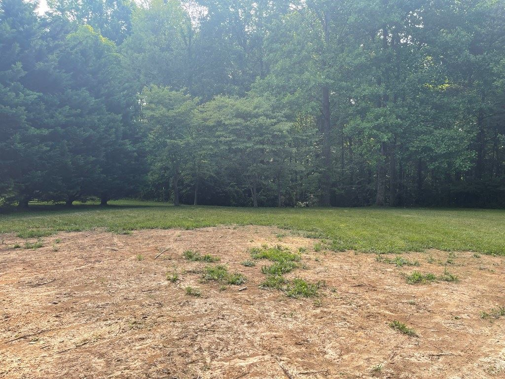 Photo of 800 Mills Creek Drive, COOKEVILLE, TN 38501 (MLS # 205012)