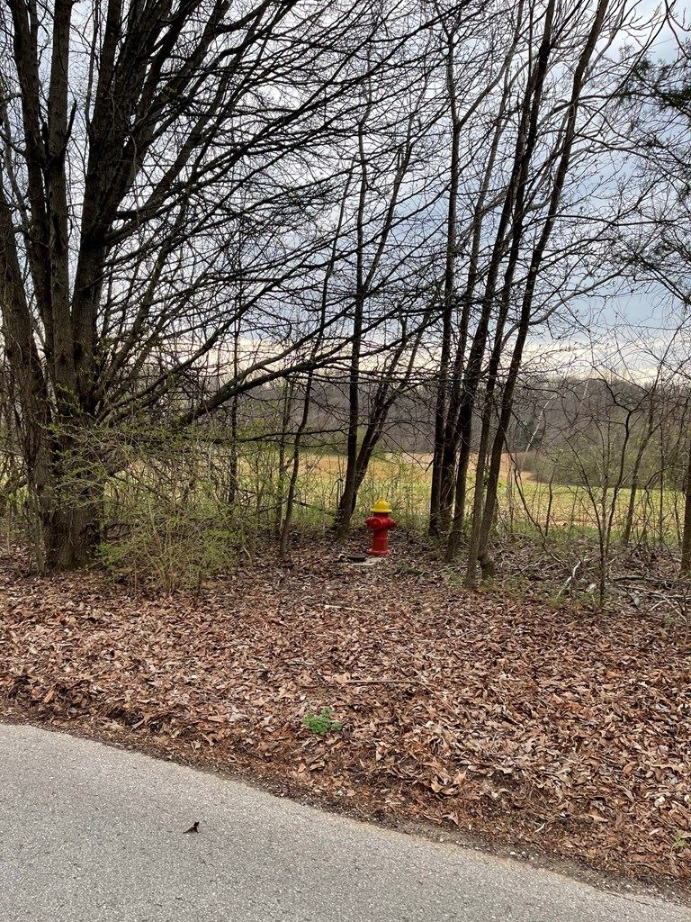 Photo of 1522 Salem Road, COOKEVILLE, TN 38506 (MLS # 203222)