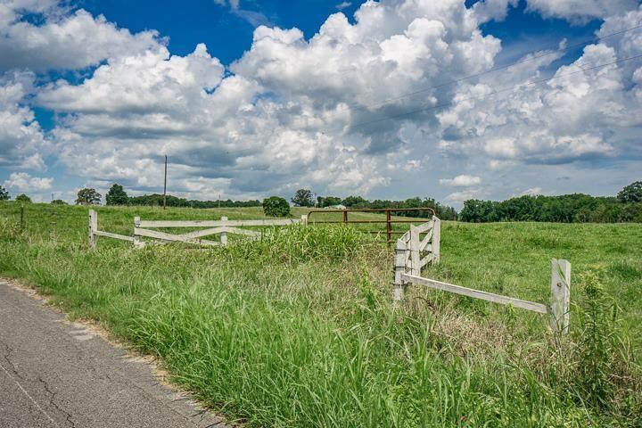 Photo of 23.8 ac Will Thompson Road, Walling, TN 38587 (MLS # 205665)
