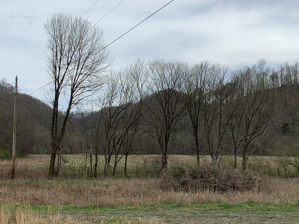 Photo of 1.5 Acre Jennings Creek Hwy, WHITLEYVILLE, TN 38588 (MLS # 203724)
