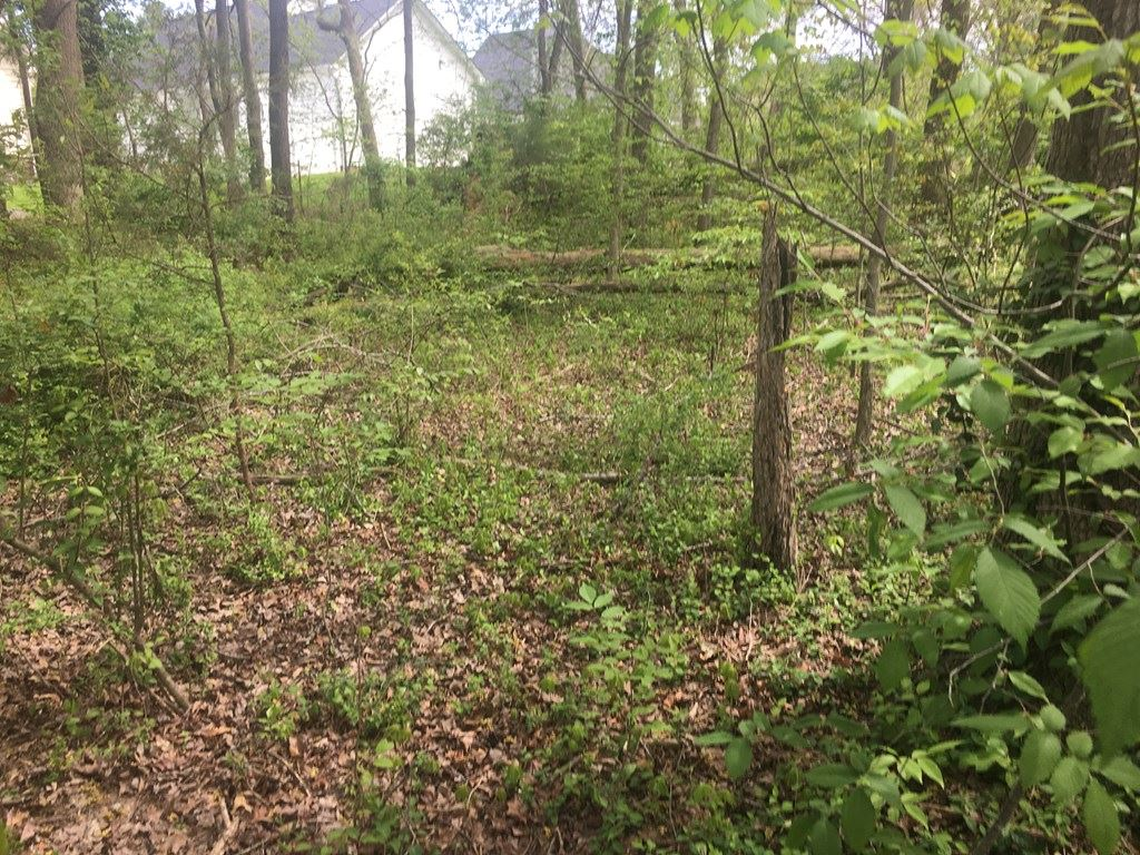 Photo of 384 S Old Kentucky, COOKEVILLE, TN 38501 (MLS # 203838)