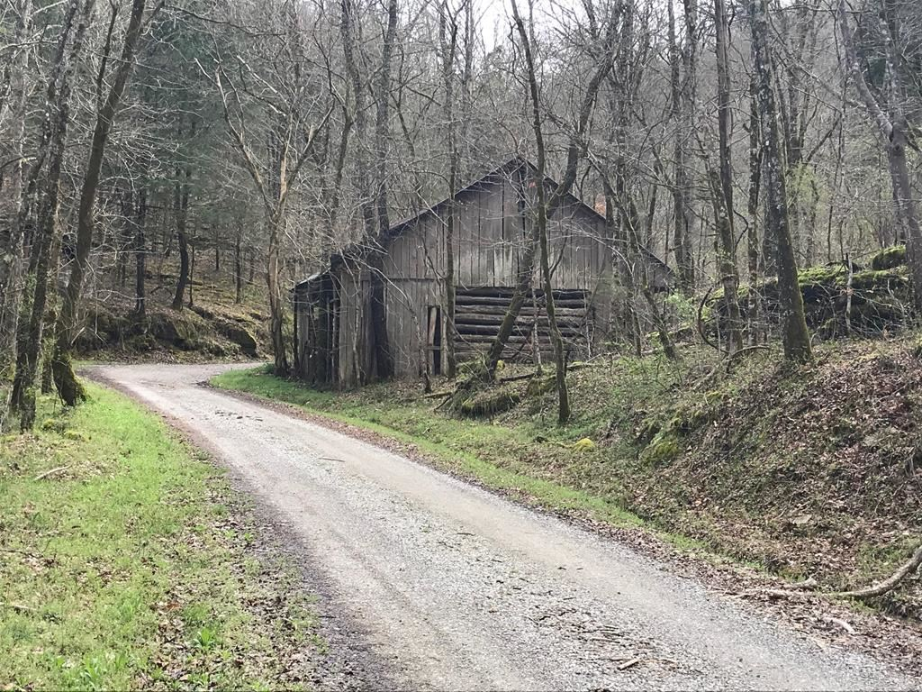 Photo of 51.5 AC Anderson Carr, Baxter, TN 38644 (MLS # 203902)