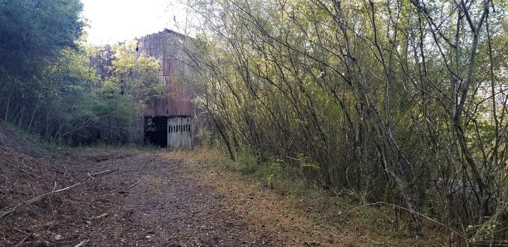 Photo of 40 Ac W Holleman Bend Ln, GRANVILLE, TN 38564 (MLS # 206903)