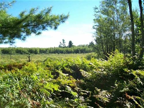 Photo of TBD W Merriman #Parcel 5, Iron Mountain, MI 49801 (MLS # 1122006)