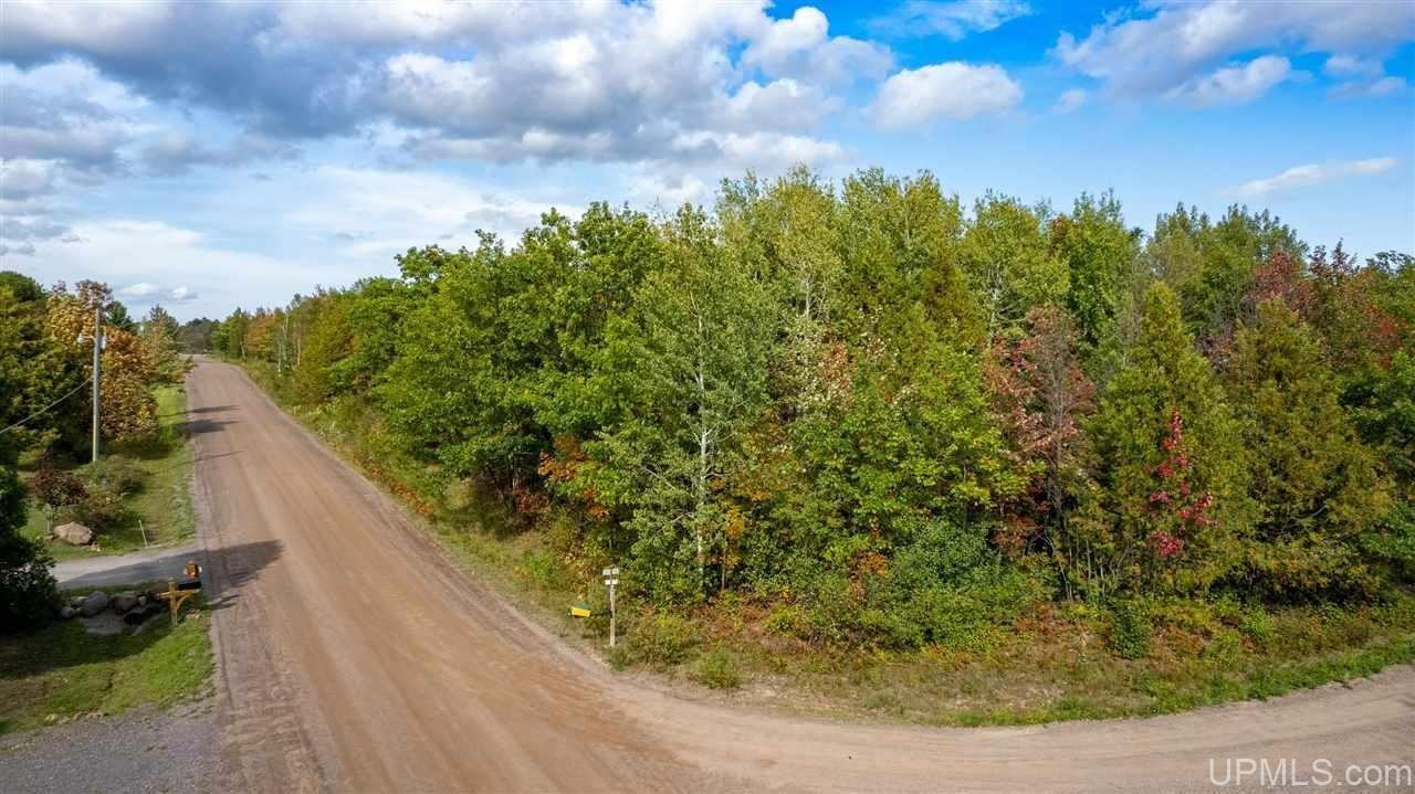 Photo of TBD Rosenlund, Hancock, MI 49930 (MLS # 1130019)