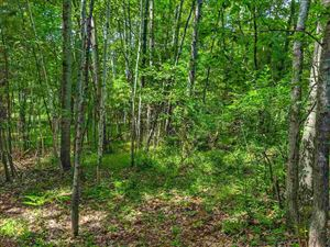 Photo of TBD Victoria Parks Addition, Iron Mountain, MI 49801 (MLS # 1117108)
