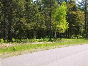 Photo of TBD Eliza Creek Ln (Lots 1-45) #Lots 1-45, Plat of E, Eagle Harbor, MI 49950 (MLS # 1109221)