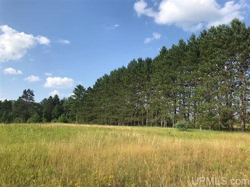 Photo of TBD Merriman West #Parcel 6, Iron Mountain, MI 49801 (MLS # 1122278)