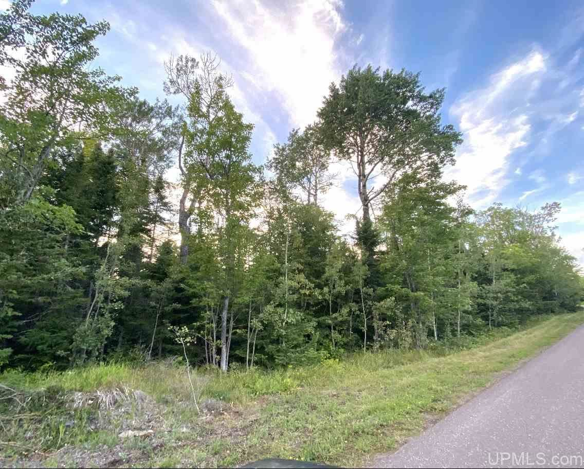 Photo of 47 North Coast, Copper Harbor, MI 49918 (MLS # 1125309)