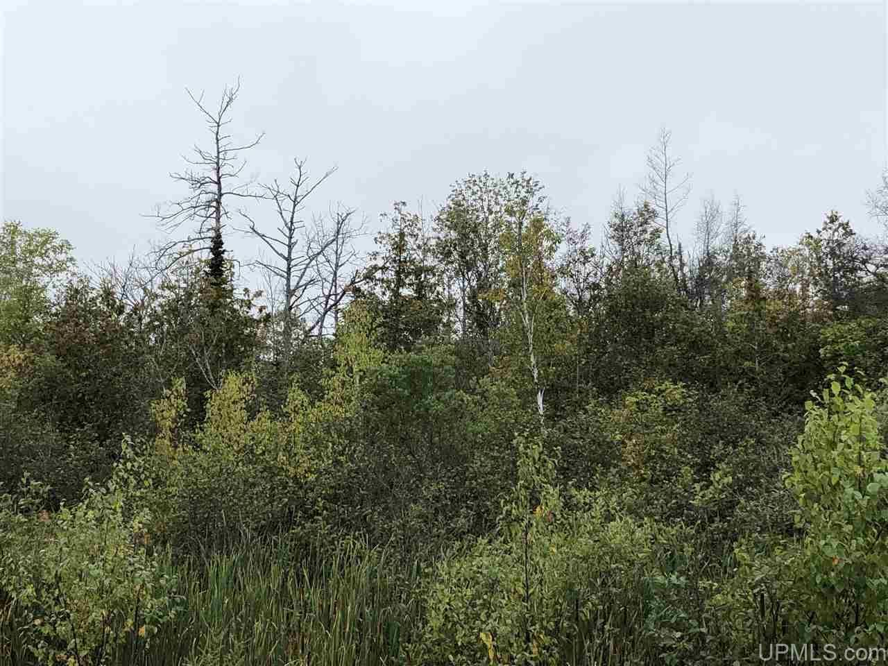 Photo of TBD Co Rd 432, Gulliver, MI 49840 (MLS # 1125329)