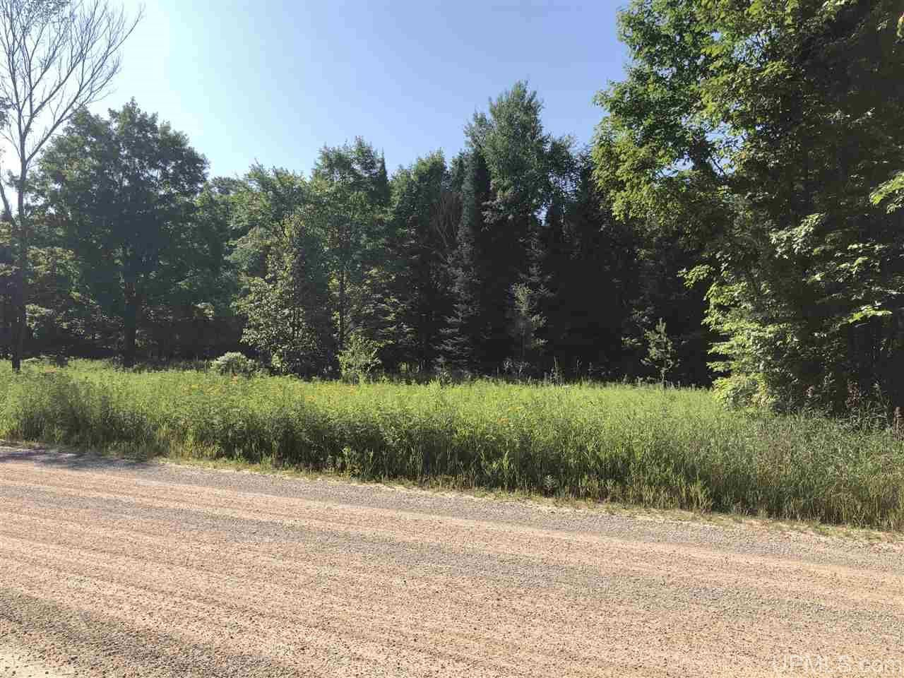 Photo of E1385 Vogel, Trenary, MI 49891 (MLS # 1125341)