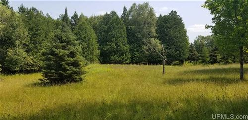 Photo of TBD Woodland Parcel 3, Iron Mountain, MI 49801 (MLS # 1124357)
