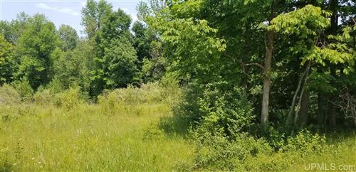 Photo of TBD Woodland Parcel 2, Iron Mountain, MI 49801 (MLS # 1124358)